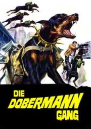 THE DOBERMAN GANG – A GANGUE DOS DOBERMANS – 1972